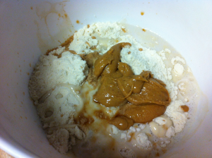 Protein bar mixture