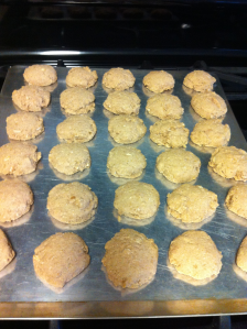 Protein oat cookies baked