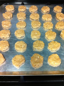 Protein oat cookies pre baked